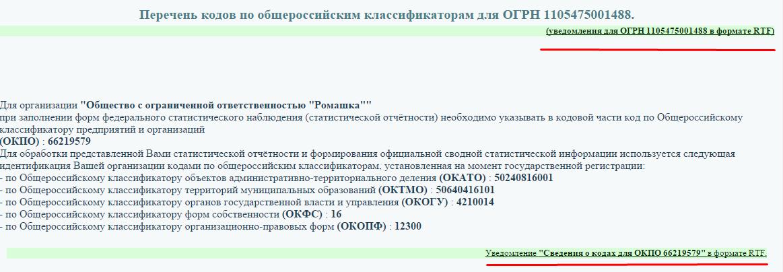Коды статистики новосибирская область